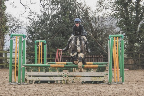 AUE Show Jumping